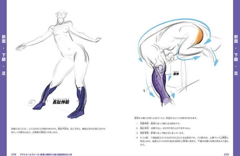anatomy-force_7